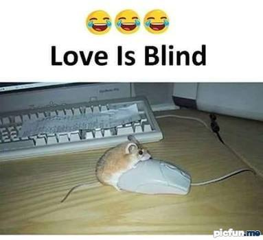 love-is-blind.jpg
